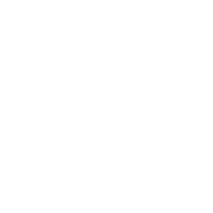 Icon, Social Media Management and content creation for companies and small businesses, get the results you want: new likes, more followers, and much more.