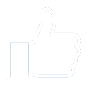 Icon, Management of Facebook Ads for brands, corporations and small businesses. Let us help you boost your ad campaign.